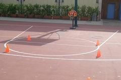 03. Basket